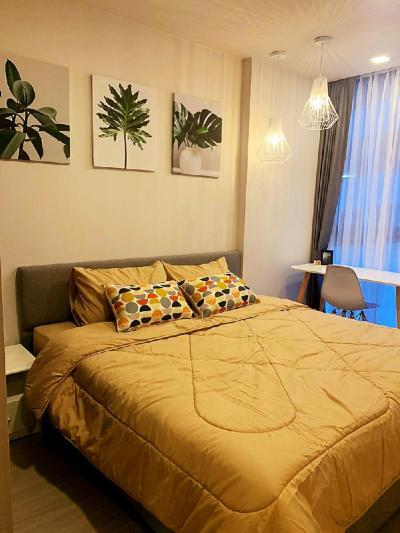 เช่าคอนโดสุขุมวิท อโศก ทองหล่อ : ห้องสวย🔥Quintara Treehaus (Sukhumvit 42 )ให้เช่า1Bedroom ใหม่ใจกลางเอกมัย (Resort Style)