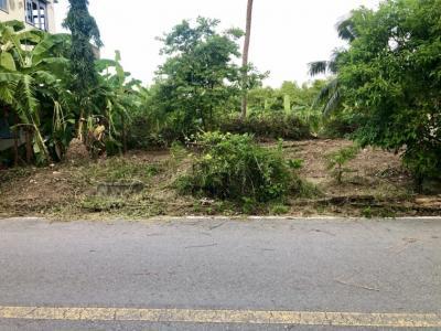 เช่าที่ดินนครปฐม พุทธมณฑล ศาลายา : ให้เช่า ที่ดินถมแล้ว 70 ตร.ว. อ.นครชัยศรี ใกล้ถนนหลักเพียง 200 เมตร
