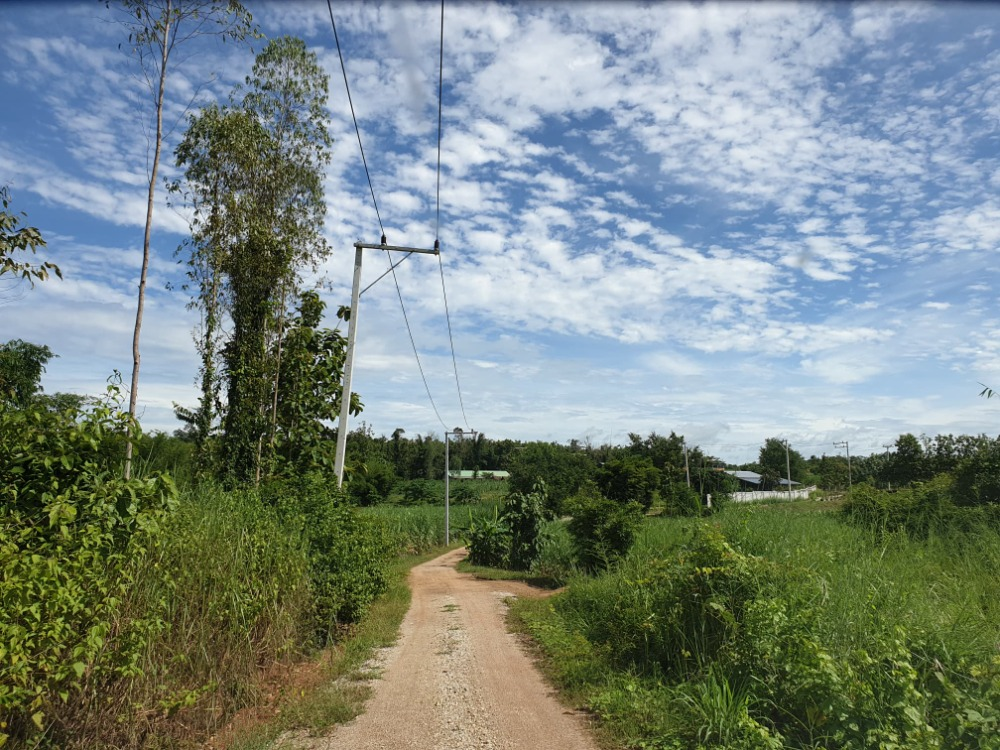 For SaleLandLoei : Land for sale in Loei Province In the alley next to Pak Puan Arboretum, 2-3 km away from the road 201, beautiful land, cheap price, 3 rai 2 ngan.