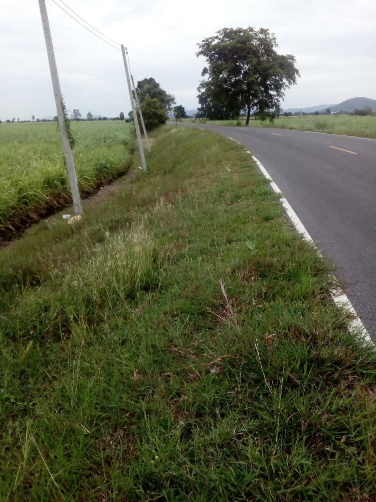 For SaleLandLop Buri : Land for sale 26 rai 3 ngan 90 square wah (can be divided for sale)