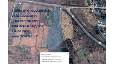 For SaleLandNong Bua Lam Phu : Land for sale 15 rai, rubber plantation, palm plantation, Si Bun Ruang District Nong Bua Lam Phu Province