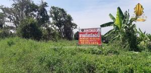 For SaleLandRangsit, Patumtani : Selling below the market, 1.99 million baht per rai, 3 rai of vacant land, Sam Khok, Pathum Thani, including transfer.