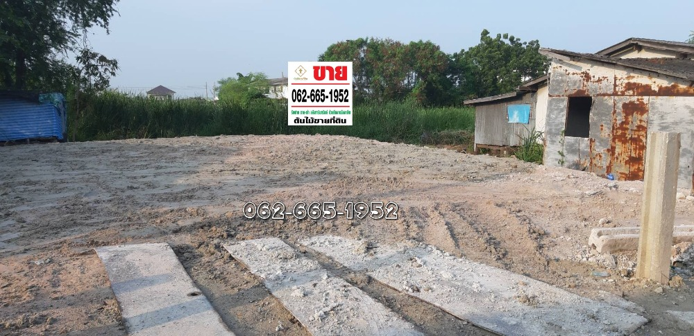 For SaleLandSamrong, Samut Prakan : Land for sale, Soi Petcharoon, Bang Pu Municipality, Soi 97/6 Khlong 2, Bang Pu Mai Subdistrict, Mueang Samut Prakan District Samut Prakan Province into the alley 500 meters to the new road