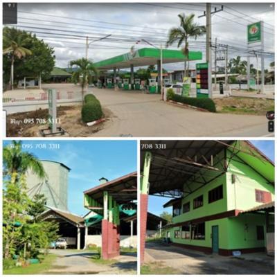 For SaleFactoryChiang Mai, Chiang Rai : Sale of land and buildings. Lower than the estimated price Next to Asia Road 118 Chiang Mai, Chiang Rai Silos, gas station, Longan plantation, ready to operate Wiang Pa Pao, Chiang Rai, Mae Suai, Mae Khachan