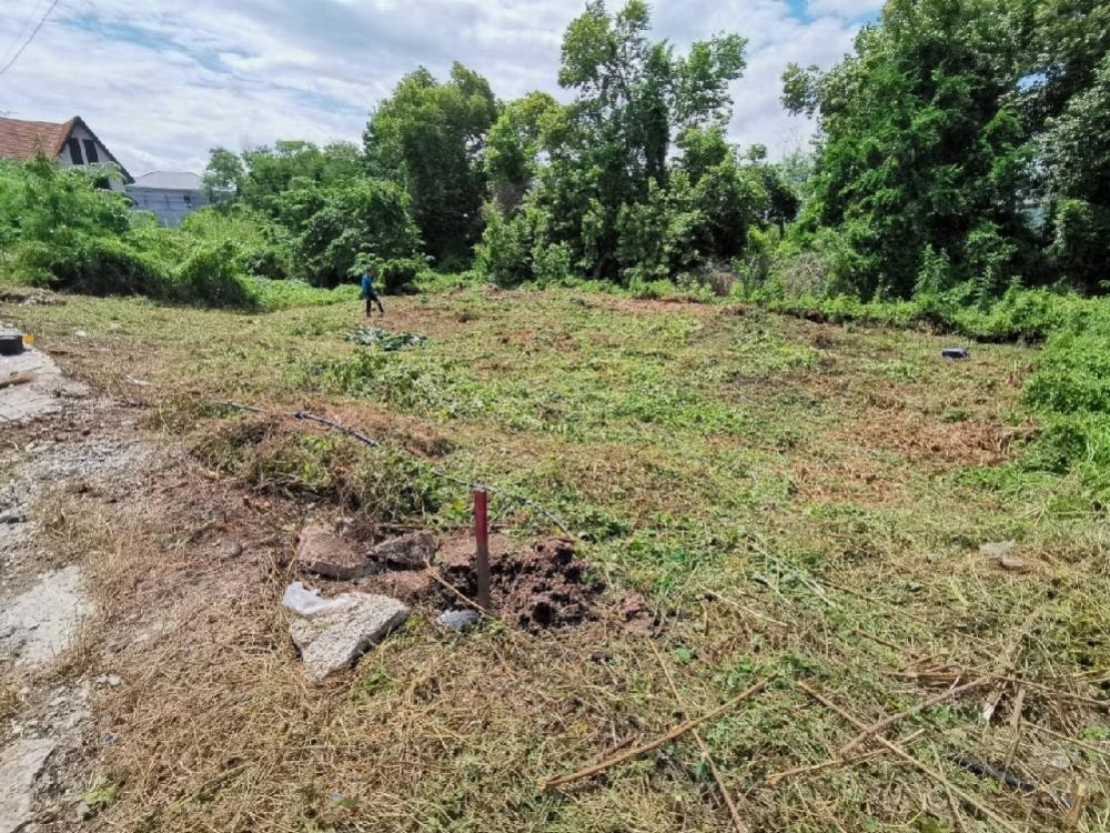 For SaleLandBangbuathong, Sainoi : Land 50 sq m. Bang Yai, opposite Central Westgate, 100 m away from the main road.