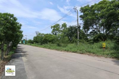 ขายที่ดินมีนบุรี-ร่มเกล้า : ขายที่ดิน 5 ไร่ ซอยวัดอู่ตะเภา ถนนฉลองกรุง-ลาดกระบัง กรุงเทพฯ