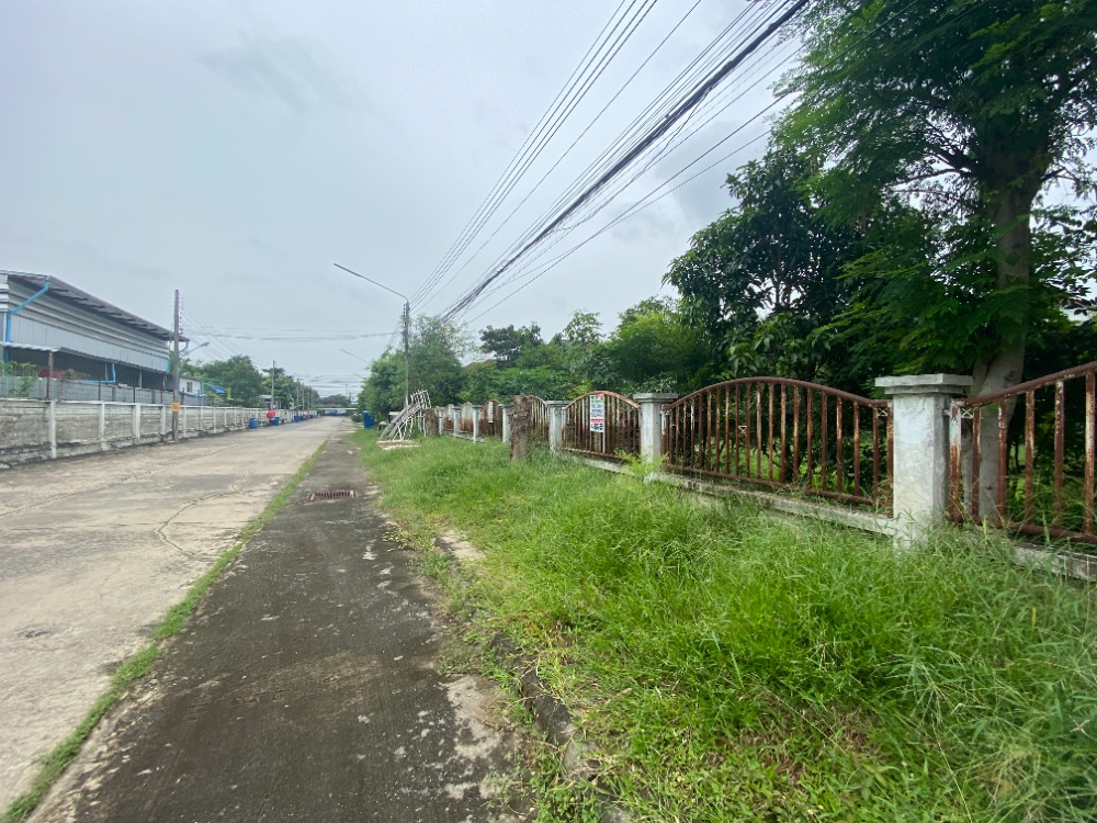 For SaleLandRangsit, Patumtani : Land for sale 201 square wah, low price in the village, honest, safe and profitable.