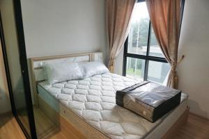For RentCondoChengwatana, Muangthong : [For Rent] Plum Condo Mix Chaengwattana, BTS Wat Phra Sri, Studio 23 sq.m.