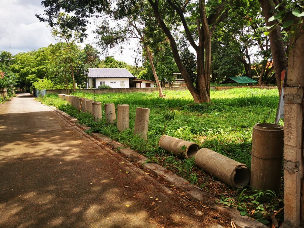For SaleLandChiang Mai, Chiang Rai : Land for sale in Mueang Chiang Mai District, close to Chiang Mai train station.