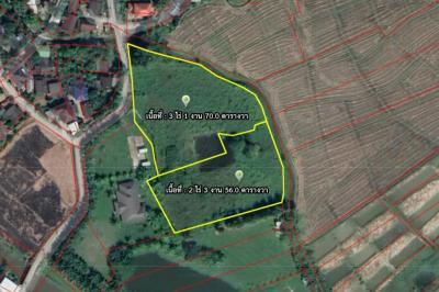 For SaleLandChiang Mai, Chiang Rai : Land for sale, Mae Rim, Doi Suthep view, Chiang Mai.