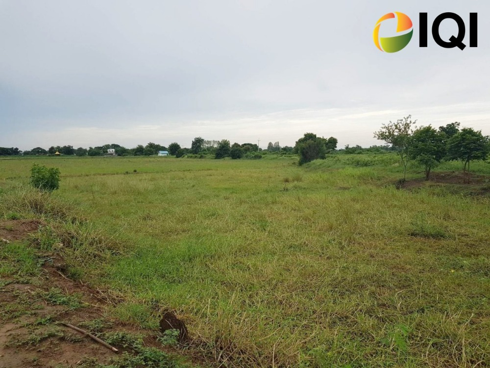 For SaleLandCentral Provinces : Land for sale 20-2-94 rai, Sam Chuk District, Suphanburi Province