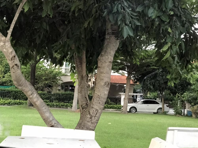 For SaleLandPhutthamonthon, Salaya : Land for Sale in Bangkok, Phuttamonthon Sai 2Land Certificates no. 5589 2 Ngan (800 SQM.) Best Area for Living - Phutthamonthon Sai 2/7 - Good Location for Build a New Single House.- Good neighborhood, Main Road (4 lanes x 2)- Alley (lane) not that b