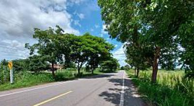 For SaleLandRatchaburi : Land for sale 4 rai on the road 4011 Thap Tako checkpoint, Chom Bueng
