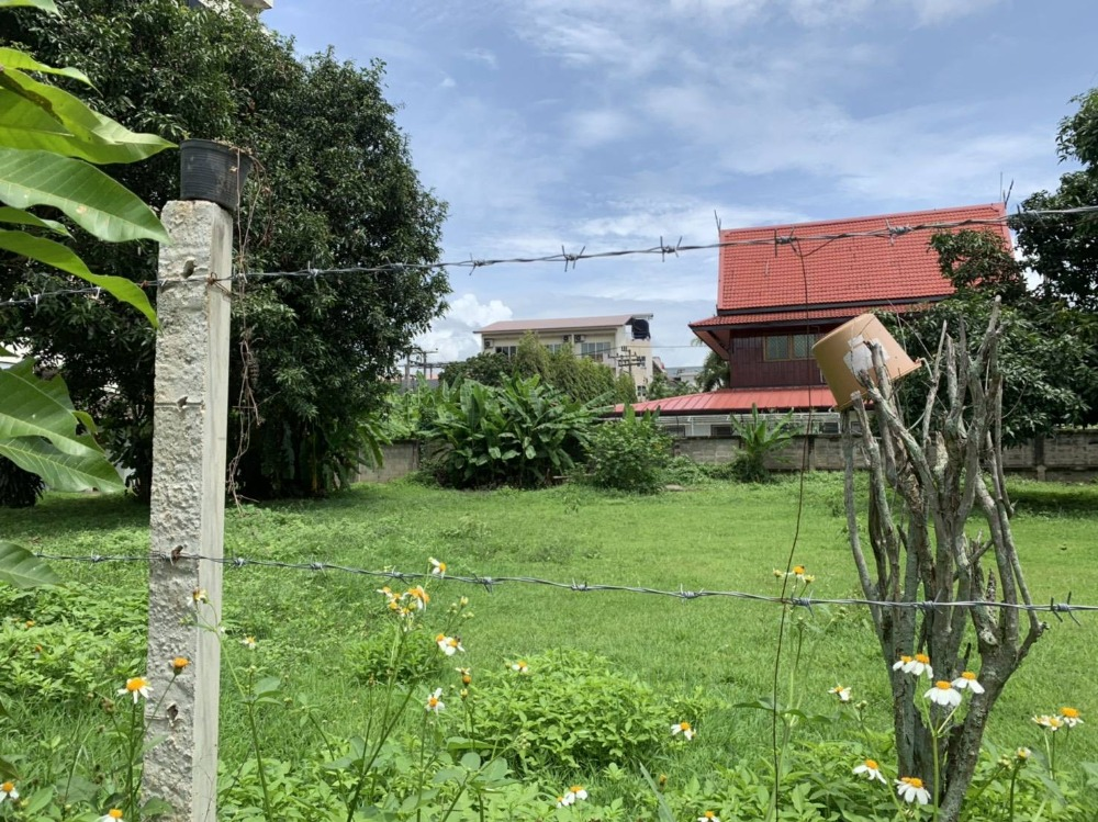For SaleLandChiang Mai : Quick sale !!! Land for beauty, 294 sq m. Huay Kaew Road, Soi 3, near Chiang Mai University, Suthep Subdistrict, Mueang Chiang Mai District, suitable for investment