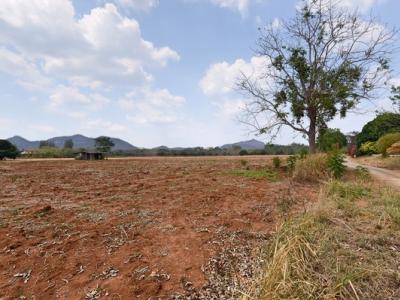 For SaleLandKorat KhaoYai : Land for sale in Khao Yai opposite Kirimaya, 66 rai, garden plot on the road Suitable for a resort hotel