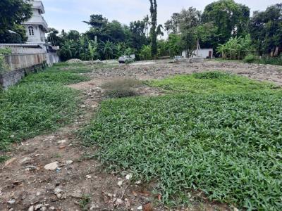 For SaleLandPattanakan, Srinakarin : ขายที่ดินถมแล้วขนาด 250 ตรว. อยู่ท่ามกลางธรรมชาติ ทางเข้าออกสะดวก พัฒนาการ 61 เหมาะปลูกบ้าน