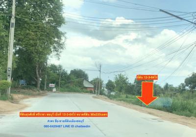 ขายที่ดินพัทยา บางแสน ชลบุรี : ขายที่ดิน 12-3-64ไร่ สุรศักดิ์ ศรีราชา ชลบุรี