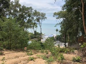 For SaleLandSamui, Surat Thani : Selling : High Potential Land In Samui along the montain with Seaview and close to the main road, Fisher Man , 2+ Rai ( 3,200 sqm )