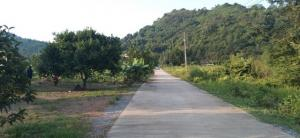 For SaleLandNakhon Nayok : Land for sale 229 sq m, next to the road, mountain view, surrounded more than 180 degrees, 200 meters away from the main road.