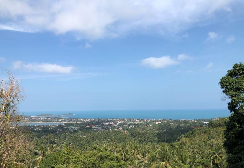 For SaleLandSurat Thani : Land for sale sea view Samui island