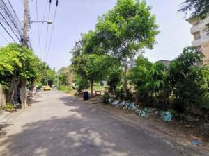 For SaleLandVipawadee, Don Mueang, Lak Si : Land for sale 902 square wa, Soi Sai Yud, just Phaholyothin Road, 1 km