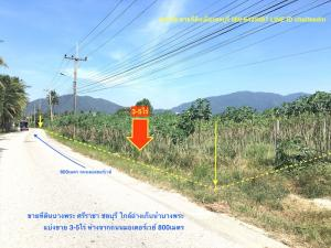 For SaleLandChonburi, Pattaya, Bangsa : Land for sale Bang Phra, Si Racha, Chonburi