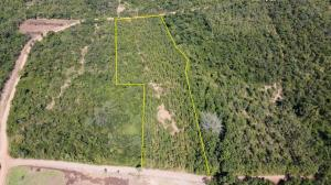 For SaleLandLampang : Sale for sale, 3,000 golden teak trees, is a title deed on 2 public roads, water, electricity access, Lampang Province, Koh Kha District, Na Kaew Subdistrict