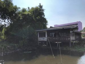 For SaleLandRama5, Ratchapruek, Bangkruai : ขายที่ดินติดริมคลอง 2 งาน 28 ตรว2.5 ล้านบาท ใกล้วัดบางไกรนอก วงเวียนพระราม 5