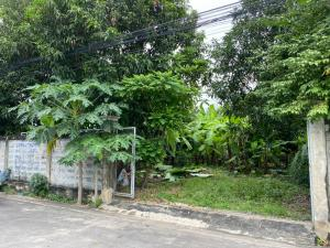For SaleLandLadprao101, The Mall Bang Kapi : Land for sale with a fence, Ladprao 101 intersection 42, Soi Thep Thawi 2