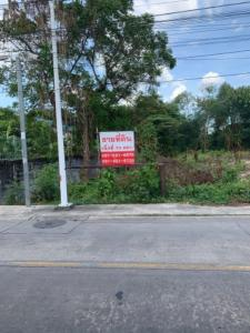 For SaleLandBangkruai, Ratchapruek : Land for sale 73 square wa, price 3,650,000 baht