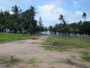 For SaleLandTrat : Land for sale by the sea Beautiful, suitable for a resort hotel, Koh Chang Tai, Trat Province