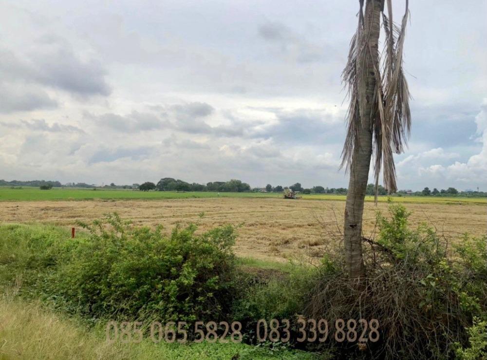 For SaleLandRangsit, Patumtani : Land for sale in the area of 21-2-68 rai, Ratchapruek Road (Pathum Thani) into the Soi 80 meters.