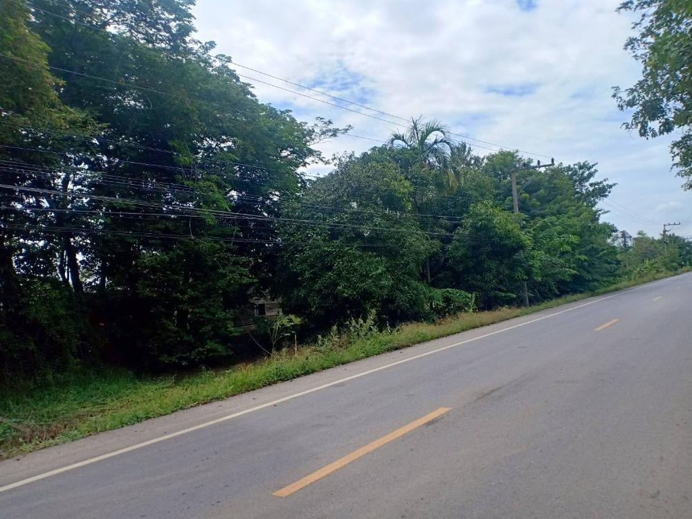 ขายที่ดินรังสิต ธรรมศาสตร์ ปทุม : ขายที่ดินทำเลเนื้อที่ 98 ไร่ 24 ตารางวา หน้ากว้างติดถนนใหญ่ 140 เมตร ถนน รังสิต-นครนายก คลอง11 ราคาขาย 78,400,000 บาท
