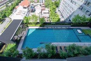 For RentCondoThaphra, Wutthakat : NC-R361🔥IDEO SATHORN-THAPRA🔥BTS Pho Nimit, Max value under building 🔥 Idio Sathorn-Thapra 🔥💚1 bed, 1 bath, 1 living room, 💚31 sqm, 11th floor 💚, swimming pool view 💚 East 💚 wide balcony, double balcony💚 Fully furnished. Can carry only one bag 💚 Complete e