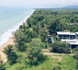 ขายคอนโดภูเก็ต ป่าตอง : ขายเพนเฮาท์ ติดชายหาดไม้ขาย