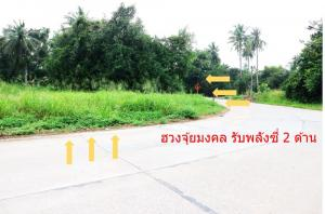 For SaleLandPattaya, Bangsaen, Chonburi : Beautiful land for sale Takhian Tia, Bang Lamung, Chonburi, 4 rai 3 ngan 87 sq m.