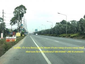 ขายที่ดินพัทยา บางแสน ชลบุรี : ขายที่ดินติดถนนสุขุมวิท เนื้อที่ 1-1-0ไร่ บางละมุง ชลบุรี