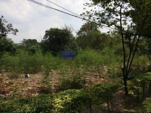 For SaleLandYothinpattana,CDC : Land next to Pradit Manutham Road (Along the express) Near the town in town hotel, area of 221 square meters, excellent location.