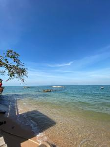 For SaleLandPattaya, Bangsaen, Chonburi : Pattaya land for sale There is a private beach, very beautiful, natural, convenient to travel.