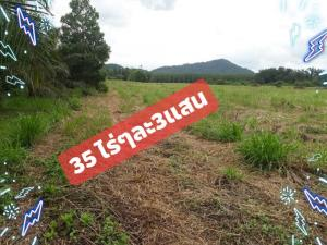 For SaleLandRayong : Ps243 collapsed forest land in Wang Chan, over 35 rai 3 hundred thousand per rai, very cheap, the price from the owner for sale by himself