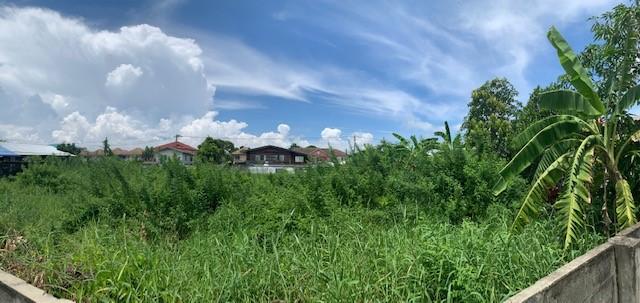 For SaleLandSamrong, Samut Prakan : URGENT SALE BELOW COST - Land 83 sq.wah near Theparak Road
