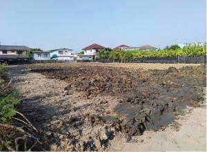 For SaleLandBang kae, Phetkasem : Beautiful land for sale in Soi Petchkasem 102/4 Rectangular land size 1 rai 2 ngan 70 sq m, beautiful width 40 m, depth 70 m.