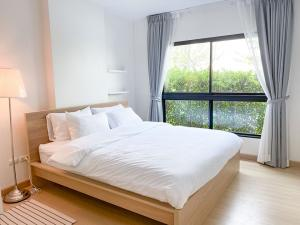 For RentCondoThaphra, Wutthakat : For rent: Supalai Loft, Talat Phlu Station, Supalai Loft @ Talat Phlu Station.