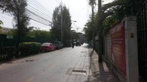 ขายบ้านอ่อนนุช อุดมสุข : ขายบ้านเดี่ยว2ชั้นสุขุมวิท93 ซอยพึ่งมี แขวง บางจาก เขตพระโขนง