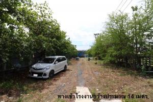For RentFactorySamrong, Samut Prakan : For rent, factory, warehouse, Pu Chao Samingprai building, Phra Pradaeng, Samrong, Sukhumvit, Samut Prakan, near the Ring Road Kanchanaphisek, Sukhumvit area, area 628 sq m, building 864 sq m.
