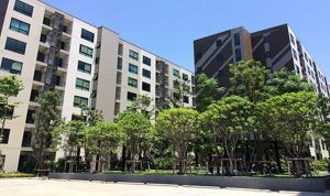 For RentCondoSamrong, Samut Prakan : Lesto Sukhumvit 113 near BTS Samrong, ready to move in, 27 sqm, prices start at 7500 baht.