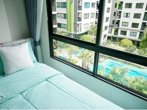For RentCondoVipawadee, Don Mueang, Lak Si : For rent, Greenene room, Don Muang Ready to move in, pool view