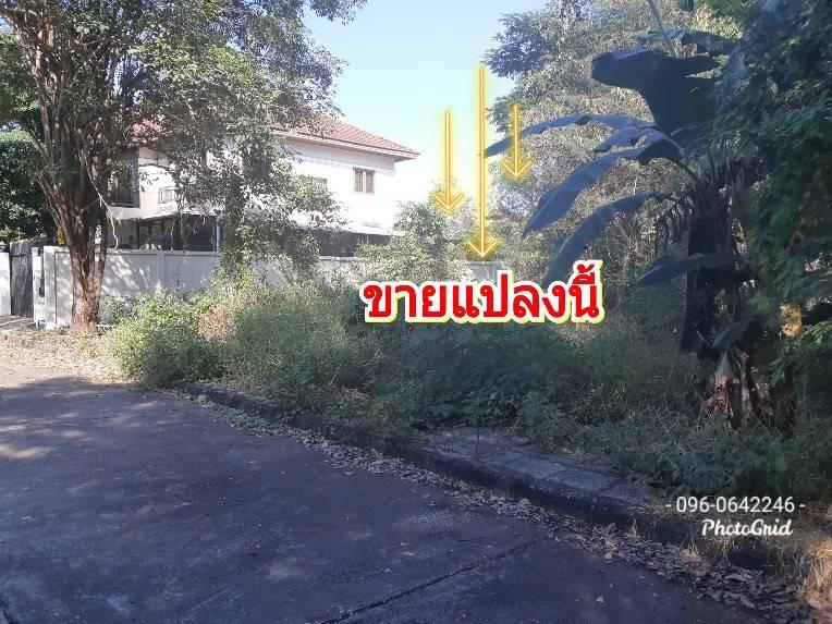 For SaleLandNakhon Pathom, Phutthamonthon, Salaya : T. '