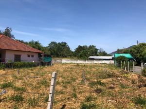 For SaleLandRayong : Land for sale (888.8 sq.m.) Sai Ngam village, Ban Chang, Rayong