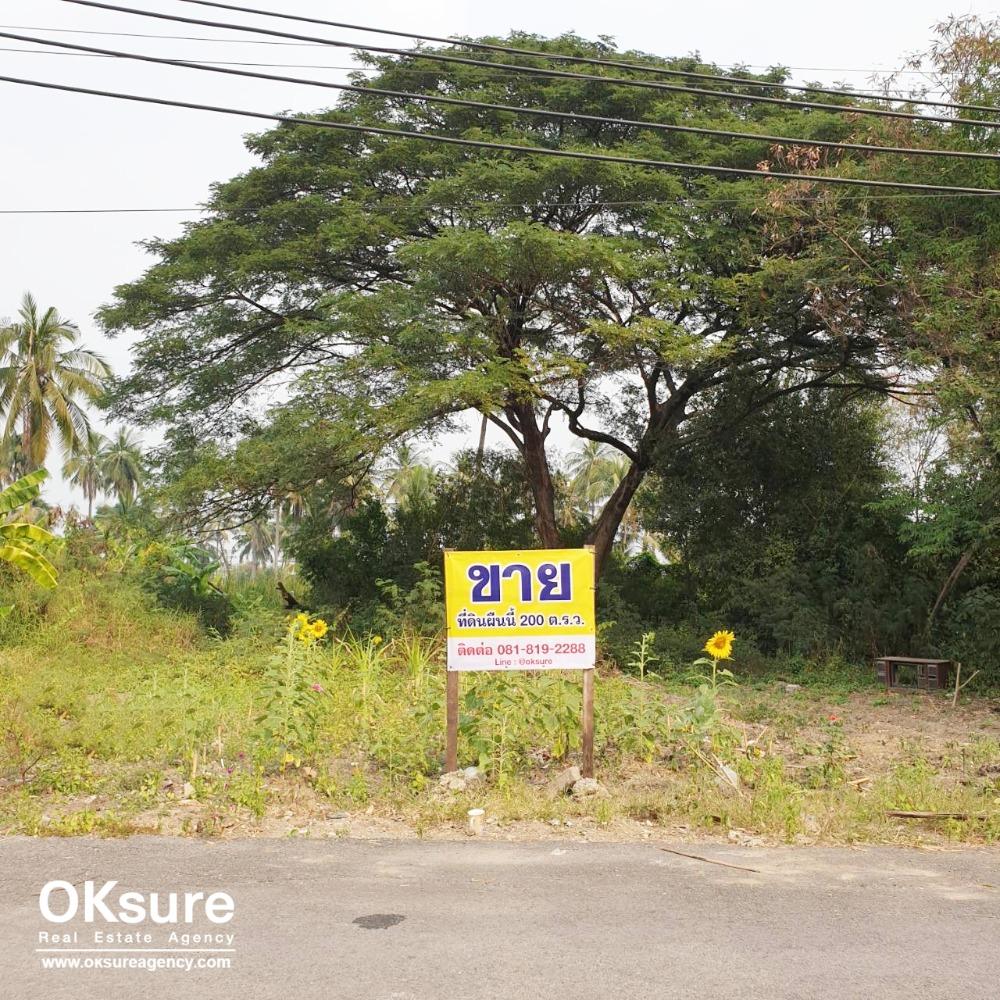 For SaleLandBang kae, Phetkasem : Beautiful land for sale, Soi Petchkasem 88, good price, convenient transportation